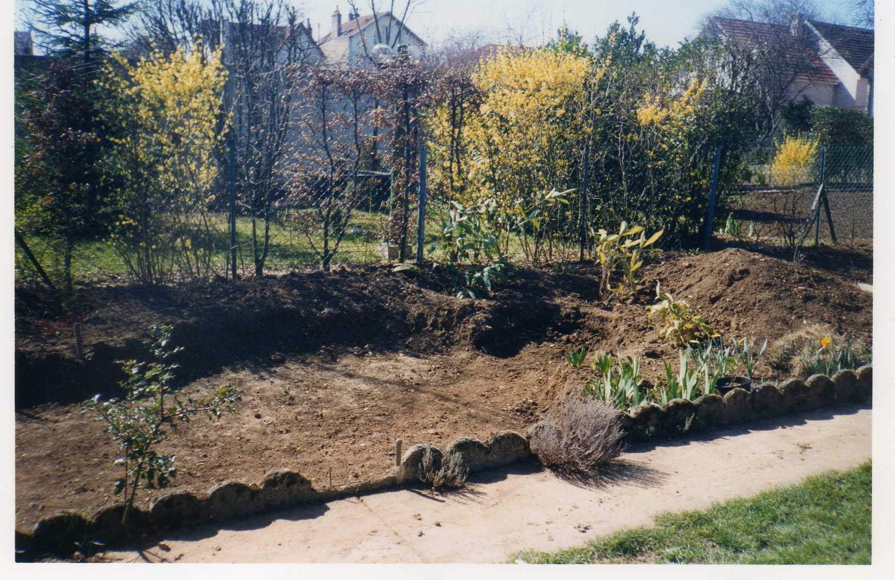 bassin1.jpg