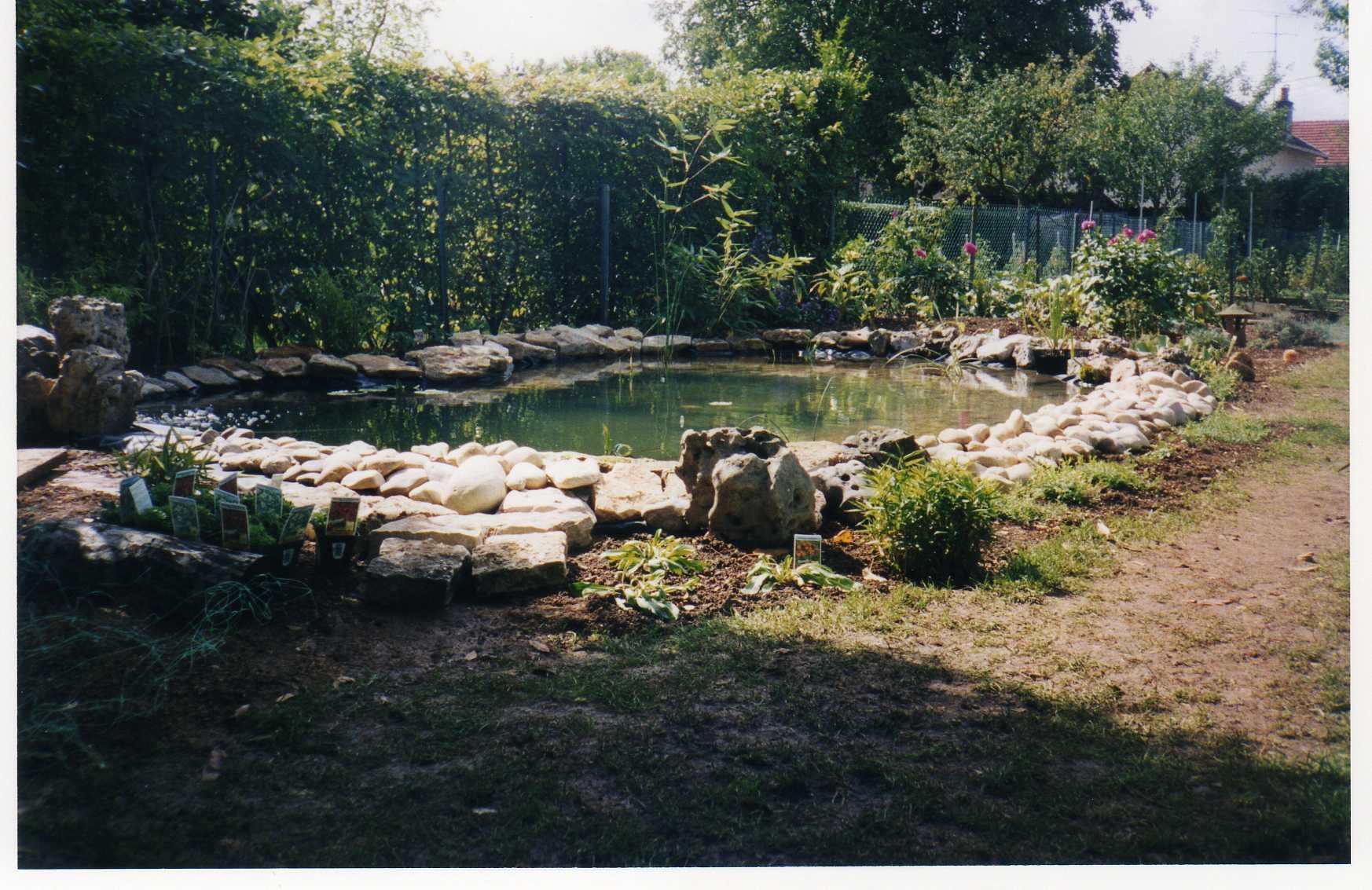 bassin11.jpg