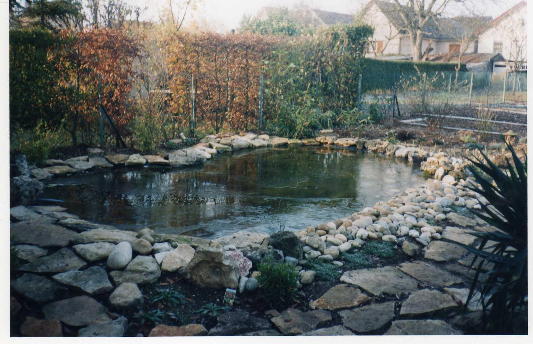 bassin12.jpg
