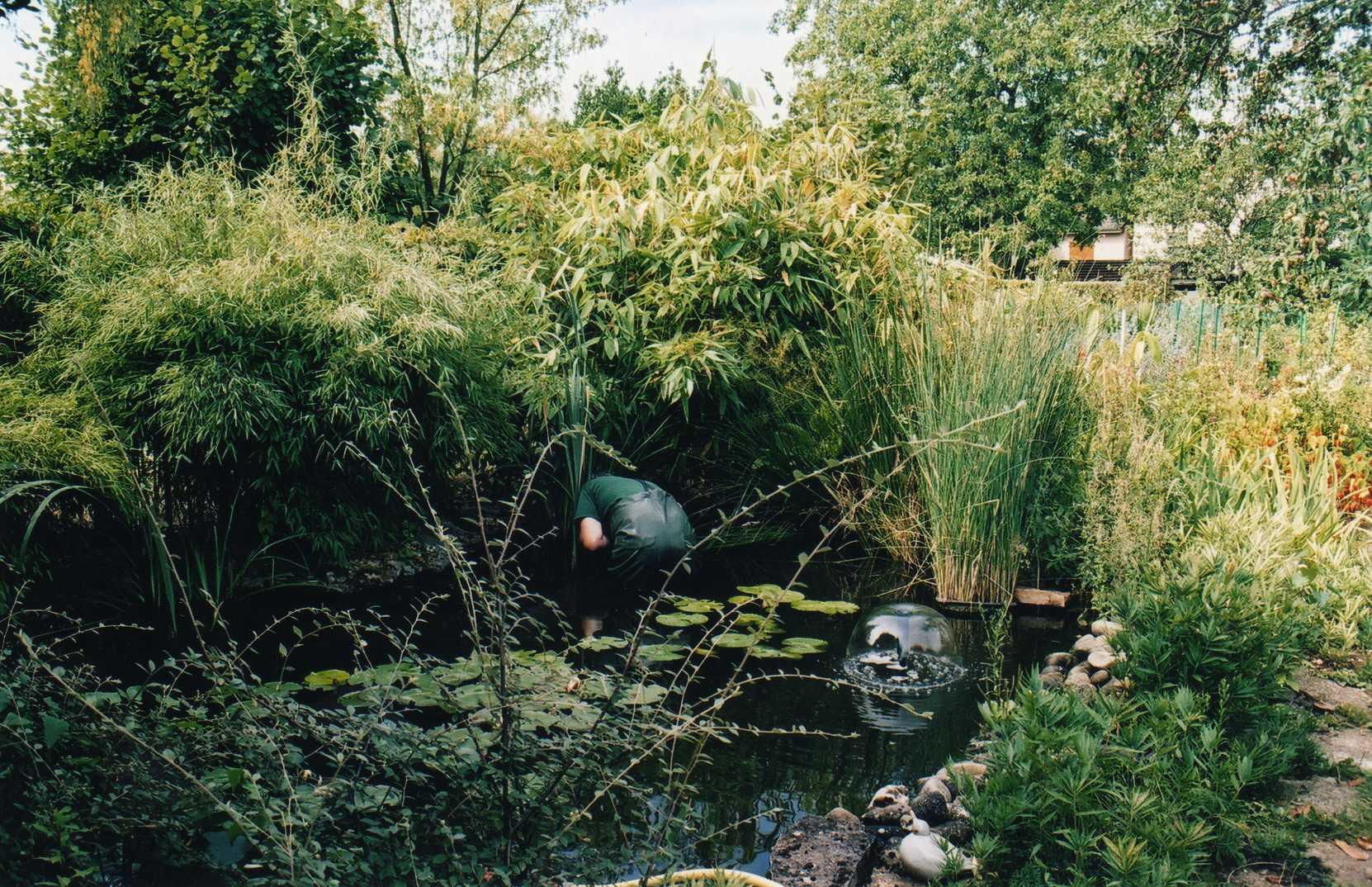 bassin13.jpg